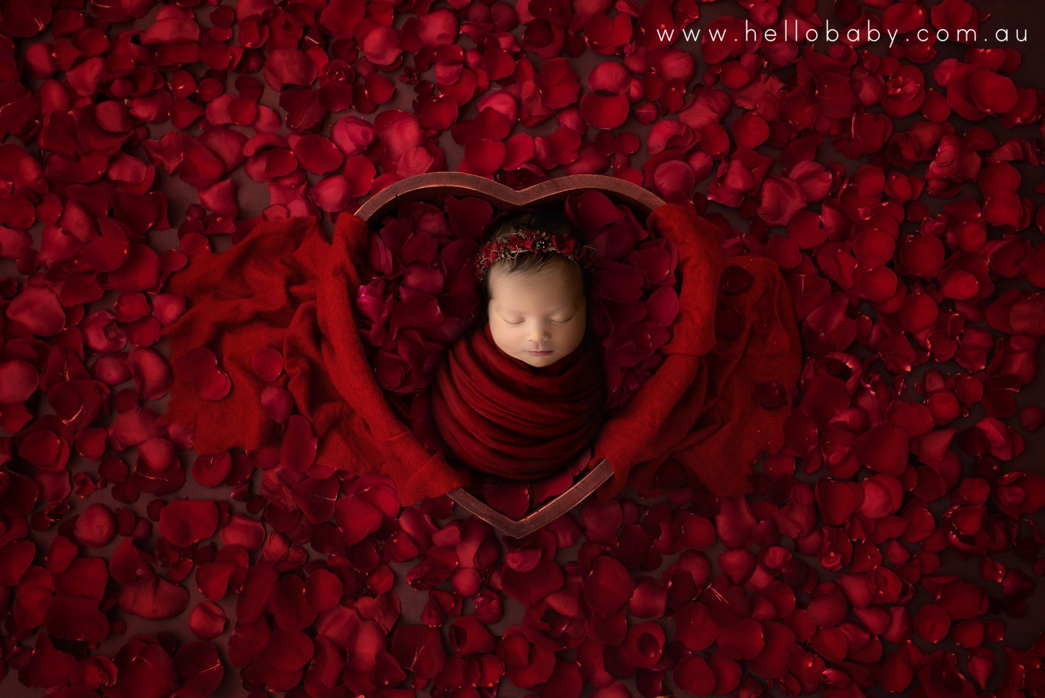 Baby girl wrapped in red in a heart shaped bowl surrounded by red rose petals