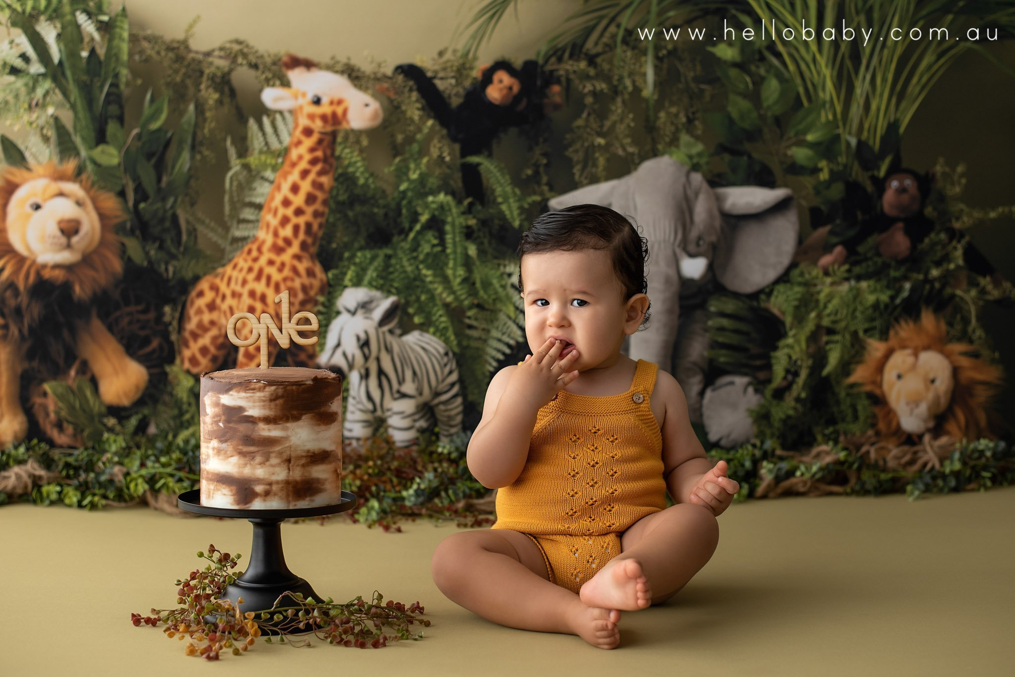 A sweet little baby boy around the age of 1 sitting on the ground next to a white and brown ombre birthday cake on a black cake stand. The little boy is wearing a mustard colour knitted romper. He has gorgeous black hair and is licking his fingers tasting the cake. in the background you can see a jungle theme with a giraffe, an elephant, two lions, a zebra and two monkeys.