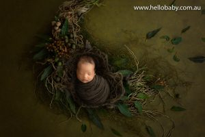 A gorgeous tiny newborn baby wrapped in a brown scarf sleeping during his newborn photoshoot, he is placed in a nest surrounded by gorgeous greenery and leaves