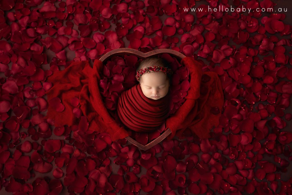 A sweet little baby girl sleeping inside a love hear shaped wooden bowl. She is wrapped in a deep red scarf wearing a matching headband. There are millions of red rose petals beside the wooden bowl.